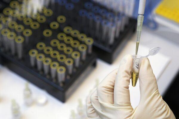 Experto cree poco probable brote de gripe aviaria en China - Sputnik Mundo