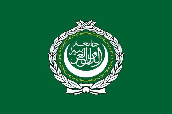 La Liga Árabe dice no tener propuestas para enviar tropas a Siria - Sputnik Mundo