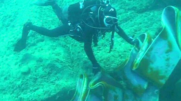 Buzos inspeccionan fragmentos del casco destruido del crucero Costa Concordia - Sputnik Mundo
