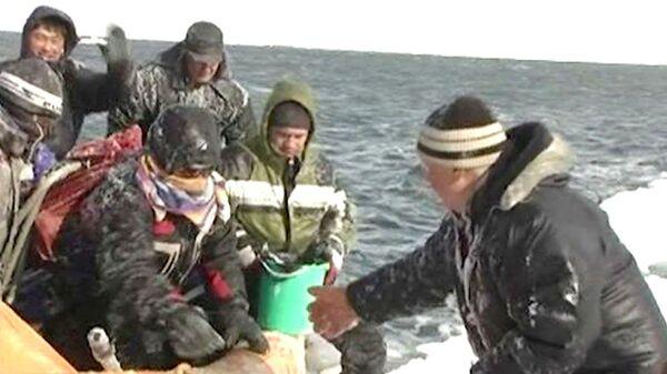 675 pescadores fueron rescatados de témpano de hielo en el sur de Sajalín - Sputnik Mundo