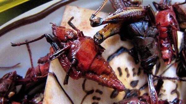 Chapulines en un mercado de México. - Sputnik Mundo