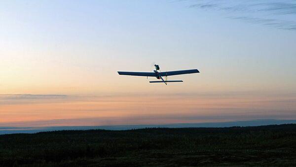 Un avión no tripulado (imagen referencial) - Sputnik Mundo