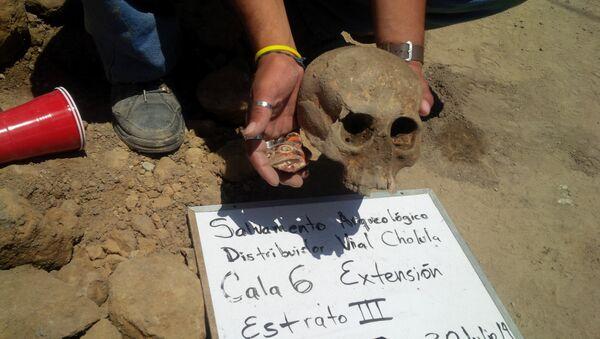 Los restos del cráneo y una ofrenda de cerámica en forma de jaguar, símbolo de los guerreros de Cholula - Sputnik Mundo