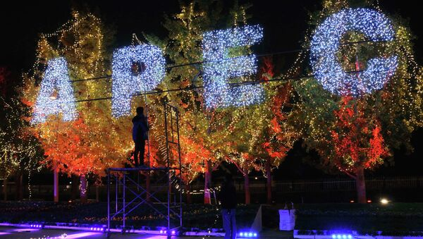 Workers set up decorative lights on trees for the upcoming APEC Summit, at the Olympic Park in Beijing, October 30, 2014 - Sputnik Mundo