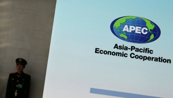 A paramilitary policeman stands guard next to a banner bearing a logo of APEC during the opening of the 2014 APEC Concluding Senior Officials' Meeting, at the China National Convention Centre, in Beijing, November 5, 2014. - Sputnik Mundo