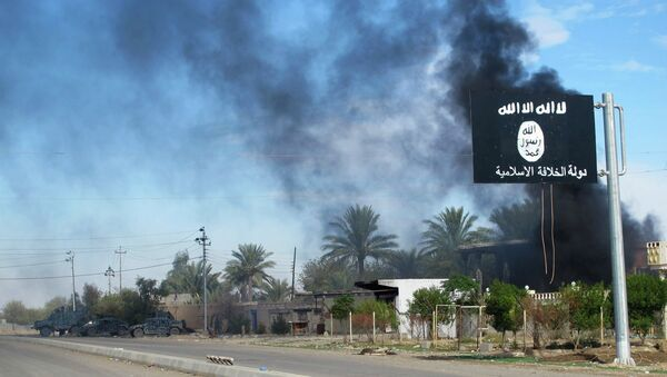 Smoke raises behind an Islamic State flag after Iraqi security forces and Shiite fighters took control of Saadiya in Diyala province from Islamist State militants, November 24, 2014 - Sputnik Mundo